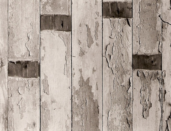 WOODEN PANELS, Aberglasney, Carmarthenshire 1995 - ABSTRACTIONS
