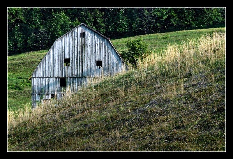 Hillside Barn - Architecture & Buildings