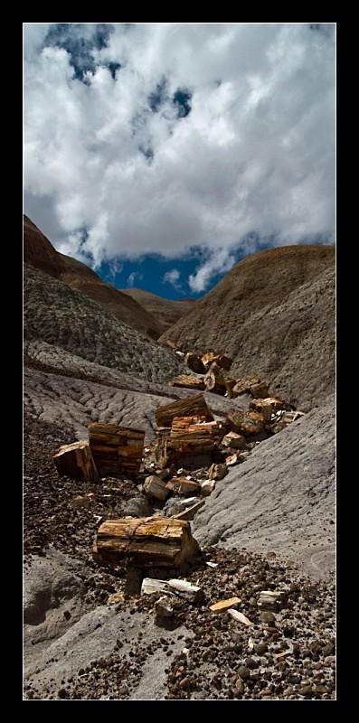 Petrified River - Landscapes