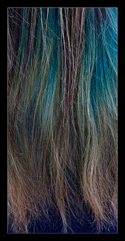 Hair Color - Details