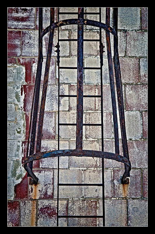 Ladder Guard - Building Elements