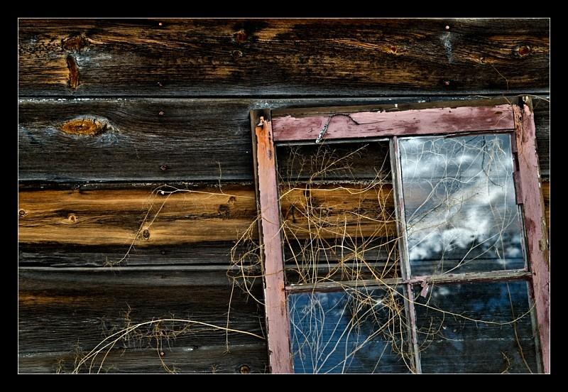 Pink Window - Details