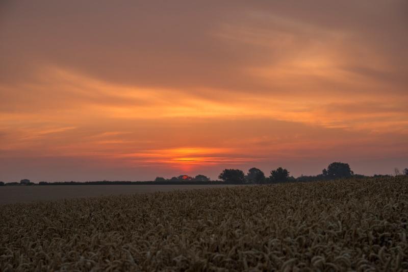 Rising Sun  - Early Mornings