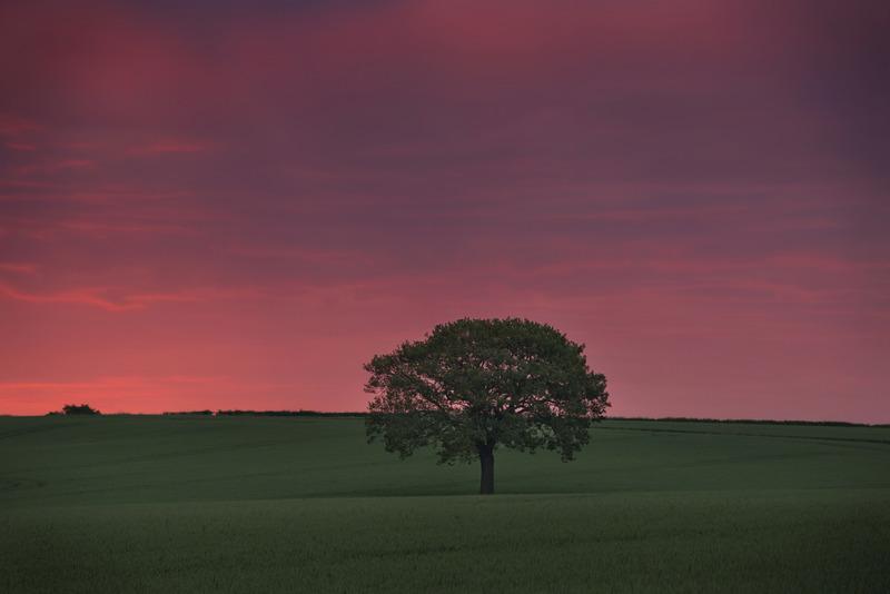 Amazing Dawn In June 2014 - Early Mornings