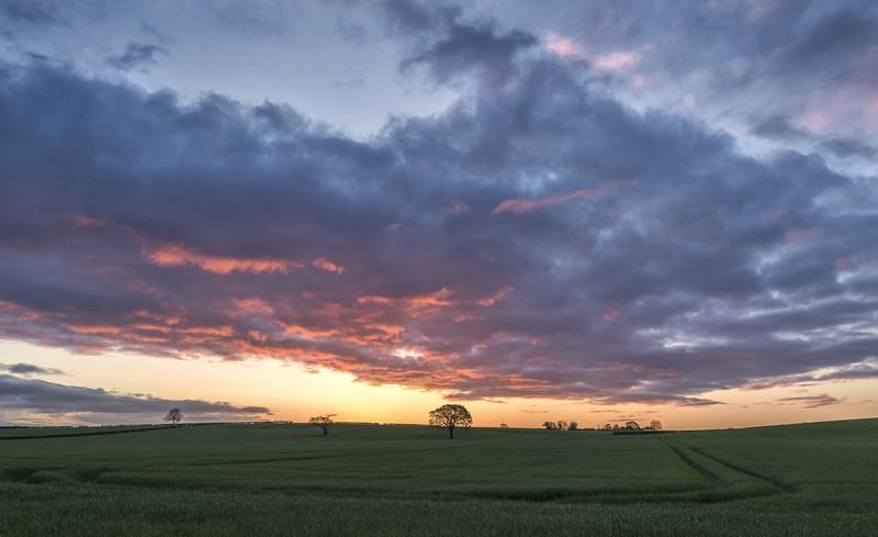 Striking Dawn - Early Mornings
