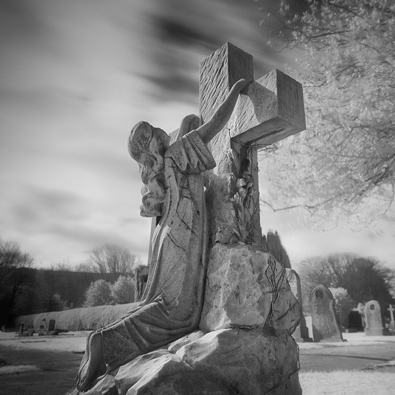 Resurrection, Infrared #1 (square format) - Infrared