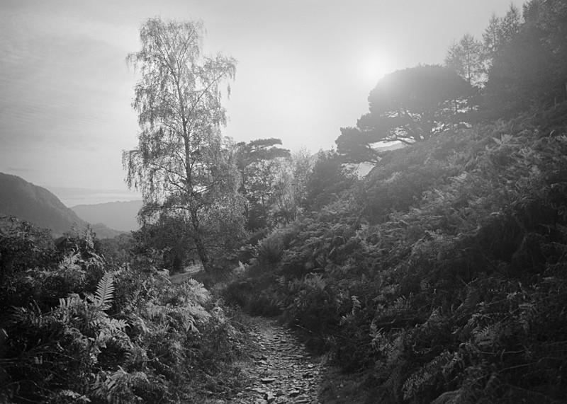 Lake District Light #5 - Landscapes