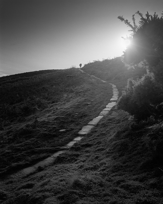 Path to Cow and Calf, Ilkley #2 - Landscapes