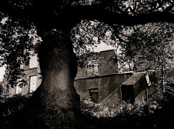 DRUMAU HOUSE, Birchgrove, West Glamorgan 1997