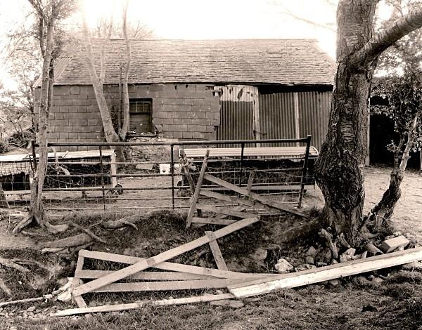 DERWEN BEDWEN, Llanfihangel-y-Creuddyn, Ceredigion 2011 - CEREDIGION FARMHOUSES